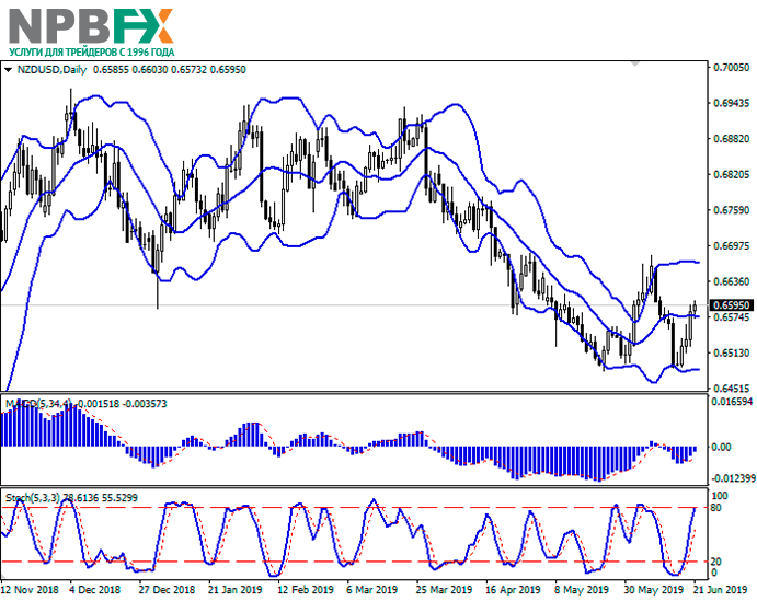 nzd-2-1.png