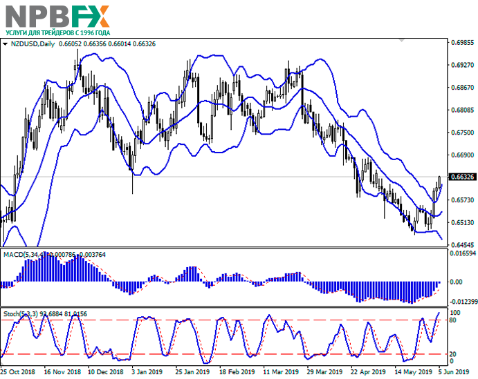 nzd-2.png
